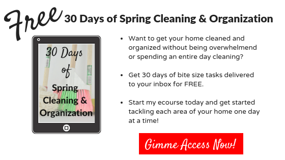 Ipad with the 30 Days of Spring Cleaning and Organization Challenge. Click the button to get access to the bite size tasks along with strategies, support, and accountability.