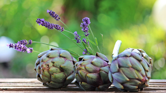 Artichokes are a plant that helps improve digestion.