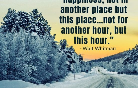 One of the December's done for you social media graphics in the club. Winter backroad covered in snow with quote about happiness.