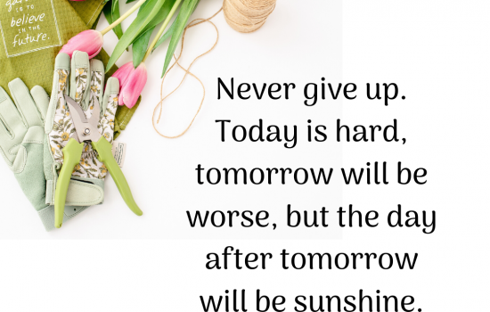 Spring quote graphic from the social media graphics club